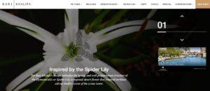 Официальный сайт - Stories